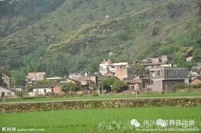 农村家庭风景图